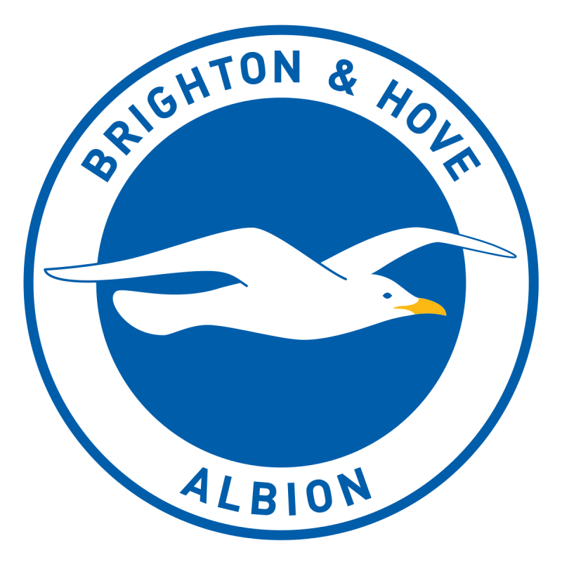Brighton Hove Albion Level Playing Field